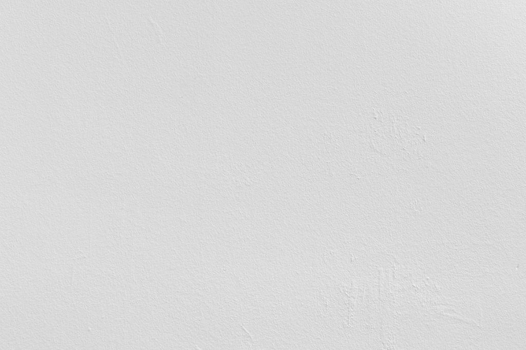 pexels-lorenzo-242236 (1)